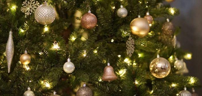Où acheter un arbre de Noel à Bruxelles avec le covid 2020 ?
