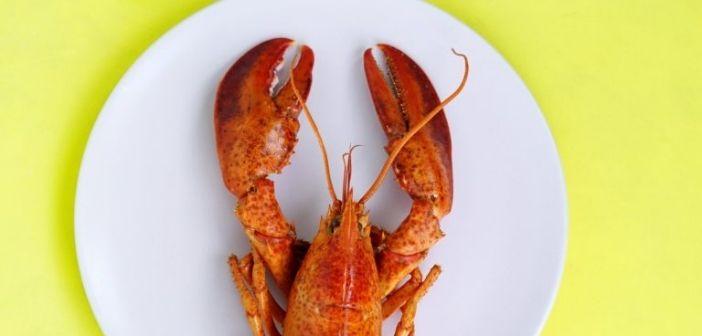 Ou acheter plateau de fruits de mer à Bruxelles